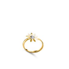MARGUERITE 18K Gold Ring